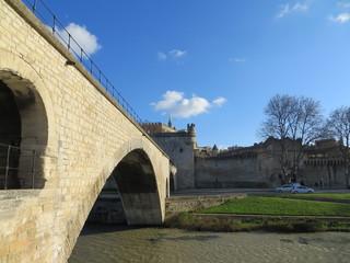 Vue depuis le pont d'Avignon