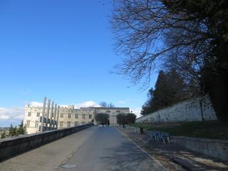 Au loin, le musée du Petit Palais