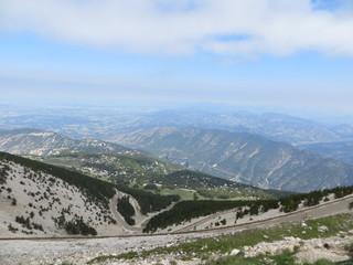 Le Mont Ventoux côté végétation - Mont Ventoux